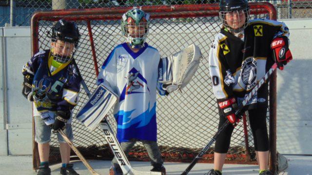 ballhockeybild